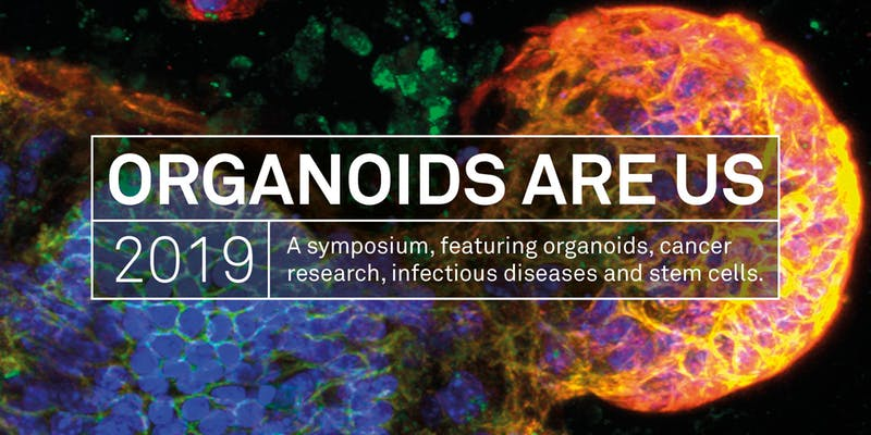 The symposium highlighted game changing advances to science and medicine made through organoid research.